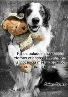 Cut Animals, Animals And Pets, Baby Animals, Love Pet, I Love Dogs, Cute Funny Animals, Baby Dogs, Dog Quotes, My Animal