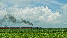 Tobacco, Corn, Train and Sky