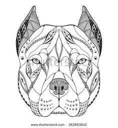 Pit bull terrier head zentangle stylized, vector, illustration, freehand pencil, hand drawn, pattern. Zen art. Ornate vector. Lace.
