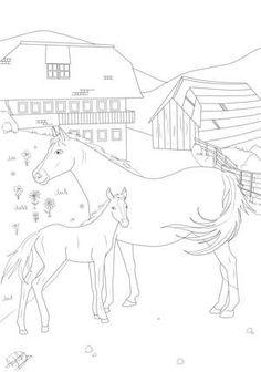 ausmalbild-pferd (600×857) | ausmalbilder