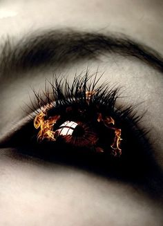 The eye of one who has overreached the limit of his or her magical abilities. The result is almost always death.