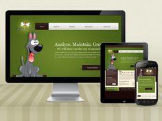 Reign The Mobile Era With Responsive Magento Website Design