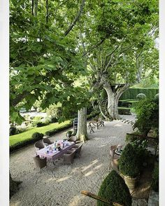 An upstairs view of the famous south facade of the home previously owned by French garden landscape architect, Dominique Lafourcade . I love the curved hedging in the distance, the tree house and how wonderful it must be sitting beneath those giant Plane trees enjoying a meal... eatdrinkgardenblog #garden #gardendesign #gardensofinstagram #gardens #gardening #france #dominiquelafourcade #provence