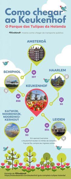 Infográfico de como chegar ao Keukenhof, o Parque das Tulipas da Holanda, de transporte público. #thenetherlands #keukenhof #tulips #infograficos #infographic #map #holanda #primavera Eurotrip, Leiden, Amsterdam, Tulip Fields, Europe Travel Guide, Netherlands, How To Plan, Keukenhof Holanda, Wanderlust