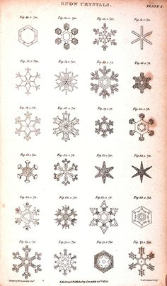 Beautiful snowflakes-amazing how they all vary from simple 2 intricate, fluffy 2 sheer, geometric 2 complicated designs.