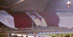 #torino #toro #calcio Torino Fc, Best Western, Football Fans, Westerns, Mary, Sport, Soccer, Philadelphia, Deporte
