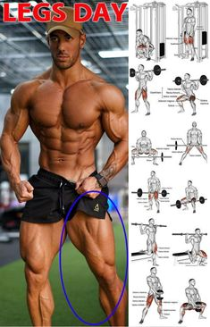 Gain Size And Strength For Monster Legs In 4 Weeks GymGuider com is part of Weight training workouts Here we have the 4 week leg programme! This is because a much as you like the look of muscle mas - Leg Workouts For Men, Gym Workout Tips, Weight Training Workouts, Fitness Workouts, Fitness Motivation, Biceps Workout, Calf Muscle Workout, Shoulder Workouts For Men, Killer Leg Workouts
