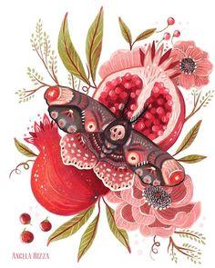 New moth tonight. #illustration #illustratorsoninstagram #art #angelarizza #artistsoninstagram #drawing #sketch #sketchbook #insect #bug #moth #fruit #flower #flowers #pomegranate #skull by canvasbird