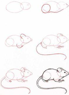 Veld muis #catdrawing