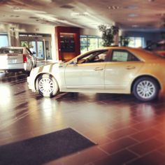 Armen Cadillac Showroom