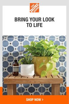 Upgrade your own indoor garden — or give mom the gift of gardening supplies for Mother's Day. From succulents to potting mixes, we have everything you'll love at The Home Depot. So bring on healthier blooms this spring with a wide range of indoor gardening products at The Home Depot.  Indoor Gardening, Gardening Tips, Garden Club, Gardening Supplies, Planter Pots, Succulents, Bloom, Bring It On, Range