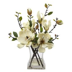 Magnolia Arrangement w/Vase A simple, yet elegant artificial plant that adds a delicate touch to any environment. The serene white flowers create a sense of harmony with its multiple stemmed displays, and are further accented by the gentle greenery housed in a modern styled glass vase  Perfect for your wedding flowers. Height 15 In. Width 13 In. Depth 10 In. Vase size H: 6.25 In. W: 4.5 In. D: 4.5 In.