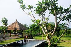 Balinese Garden Design With Swimming Pool And Gazebo In Hill Stunning gazebo and swimming pool design in modern home Home decoration http://seekayem.com