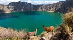 """Some honeymoon you know I can't swim."" Quilotoa Ecuador[4608  2592][OC]"
