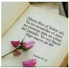 #frasesbiblia #frasesbiblicas Faith Quotes, Bible Quotes, Spiritus, Christian Devotions, Christian Memes, God First, Quotes About God, Faith In God, Dear God