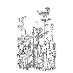 Motifs Art Nouveau, Moonlight, Wild Flowers, Deco, World, Poster, Leroy Merlin, Black N White, Wildflowers