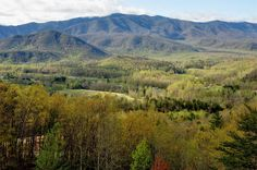 The Smoky Mountains will soon be waking up for spring!