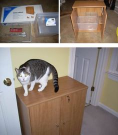 Cats are the best, but living with a litter box isn& exactly an aesthete& dream. Get inspired with these real projects that range from simple IKEA hacks to complex custom designed furniture. Diy Litter Box, Hidden Litter Boxes, Mochi, Cat Hacks, Cat Room, Pet Furniture, Repurposed Furniture, Space Cat, Diy Cabinets