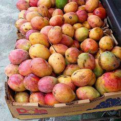 #Jamaican #Mangoes