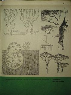 И что? И все... - Шаблоны. Антураж. Деревья. Архитектурная графика.