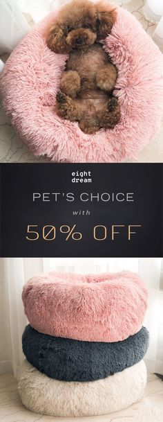Eight Dream Cloud Bed Cute Funny Animals, Cute Baby Animals, Funny Dogs, Animals And Pets, Cute Cats, Pet Beds, Dog Bed, Food Dog, Dog Items