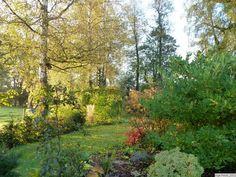 Gartenbilder-Inge Feckl-2012