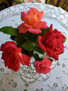 Rose Matters