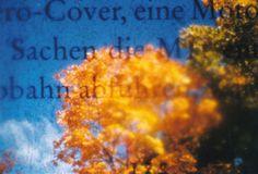 Book Filter in La Sardina (c) Lomoherz.de, lomo