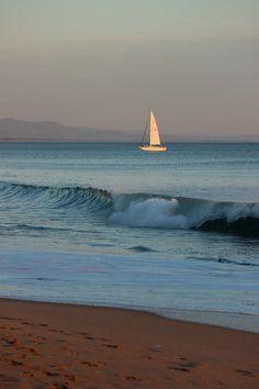 Sailing along the coast... #sailboats #ocean