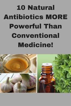 10 Natural Antibiotics MORE Powerful Than Conventional Medicine!