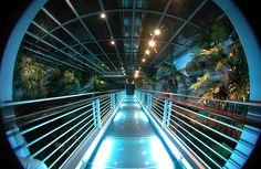 Genoa Aquarium, Italy