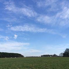 Mum loves blue skies