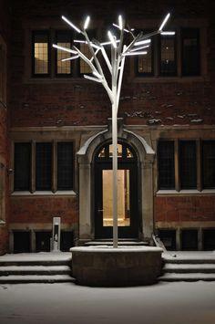 Private Residence in Rue Bishop, Montreal - Lighting products: iGuzzini illuminazione - Photographed by Jad Beainy #iGuzzini #Albero #Inspiration