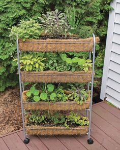 Vertical Herb Gardens That Will Grow a LOT of Herbs in a Small Space! - Garden Therapy® Clever Vertical Herb Gardens That Will Grow a LOT of Herbs in a Small Space!Clever Vertical Herb Gardens That Will Grow a LOT of Herbs in a Small Space!