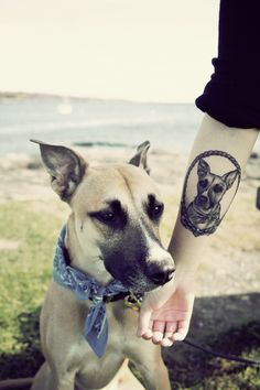 Man's Best Friend Tattoo |Kapten Hanna | Idle Hand Tattoo | San Francisco