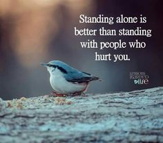 Standing alone is better than standing with people who hurt you. Life Quotes Pictures, Picture Quotes, Lessons Learned In Life, Life Lessons, Stand Alone Quotes, Motivational Quotes For Life, Inspirational Quotes, Rumi Quotes, Heart Quotes