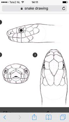 Luxury Easy Snake Drawings