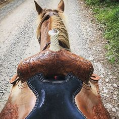 View from the back of a horse, hop on! #Horse