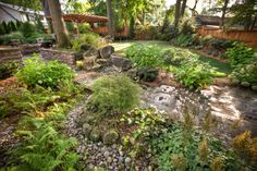 Putting green in residential backyard Garden Bridge, Backyard, Outdoor Structures, Landscape, Green, Projects, Log Projects, Patio, Backyards