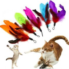 $0.99 Hot-New-Feather-REFILLS-for-Da-Bird-feather-wand-cat-toy-toys-refill