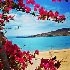 Buenos días! Que bellas son las mañanas y más cuando se viven en las playas de #Ensenada! ¿En donde te gustaría vivir tu próxima aventura? Aventura por darrenthedude85