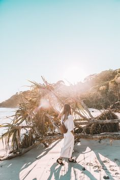 Byron Bay Travel Guide - Things to see, eat and shop! - Connie and Luna Places To Travel, Places To See, Byron Bay Beach, Beach Cove, Splendour In The Grass, Beautiful Places, Beautiful Beautiful, Backpacker, Australia Travel