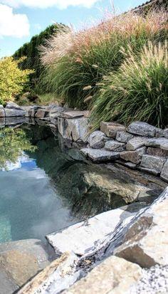 Koupací jezírko | Stavba jezírek Natural Swimming Ponds, Swimming Pools, Spring Spa, Pond Water Features, Hot Springs, Land Scape, Pergola, Pond Ideas, Garden Ideas