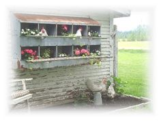 outdoor chicken nest box decor | This is going to be my spring/summer project. I LOVE IT!