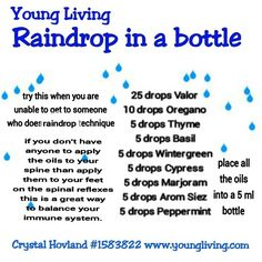 The Raindrop Technique of Massage uses the Raindrop Essential Oils as specified by Young Living Essential Oils Essential Oils For Massage, Essential Oils Guide, Essential Oil Uses, Young Living Oils, Young Living Essential Oils, Raindrop Technique, Living Essentials, Travel Essentials, Massage Oil