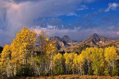 Autumn, Sawtooth Mountains, Idaho (77 pieces)