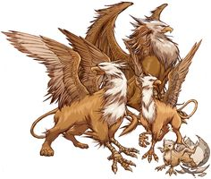 griffin creature - Google Search