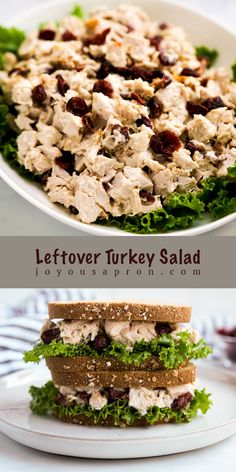 Turkey Salad - yummy and easy using leftover Thanksgiving turkey! Turkey meat combined with dried cranberries in a delicious dressing. Great in sandwiches, as salads, or by itself! #turkeysalad #turkey #leftover #Thanksgivingleftover #sandwich #recipe #joyousapron Turkey Pasta, Turkey Salad, Turkey Soup, Rotisserie Turkey, Turkey Sweet Potato Chili, Fun Food, Good Food, Easy Lunches For Kids, Salad Ideas