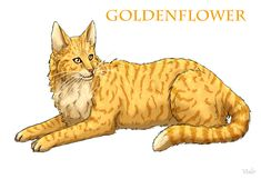Goldenflower mated Tigerstar and is the mother of Brambleclaw and Tawnypelt. Sadly she dies later in the series.