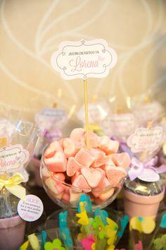 Festa-infantil-jardim-lorena-inspire-blog-minha-filha-vai-casar-37.jpg (640×960)